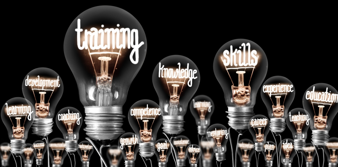 light bulbs, with lit neon-like filaments inside spelling training, knowledge, and skills.